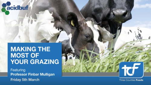 Making-The-Most-of-your-grazing-webinar